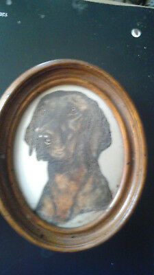 Marvetti Cultured Ivory Engraving of Dog               my  no3