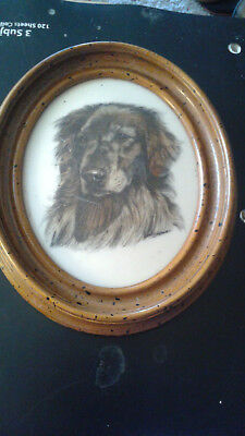 Marvetti Cultured Ivory Engraving of Dog               my  no4