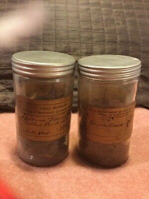 Set Of Two Vintage Antique Root Specimens Columbia University Drug Museum Jars🗝