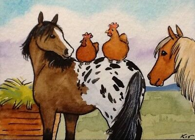 ACEO Original By Kit Lundwall Watercolor Ink Horse Appaloosa Chicken