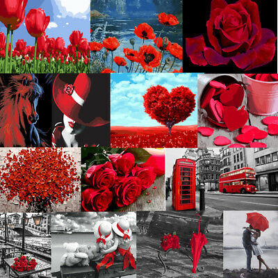 DIY Paint By Number Kit Acrylic Painting 40*50CM Red Beauty & Flowers Home Decor