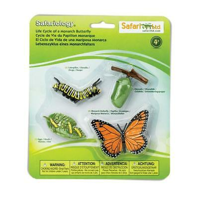 Life Cycle Of A Monarch Butterfly, educational figures models Safari Ltd #622616
