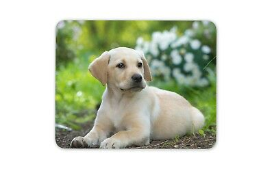 Golden Retriever /'Yours Forever/' Computer Mouse Mat Christmas Gift Ide AD-GR60M