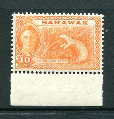 Sarawak: 1950 10c Stamp ('The Scaly Ant Eater') SG177 MNH BC275