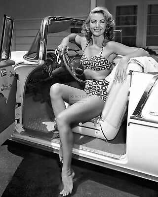 Actress Dorothy Malone Pin Up - 8X10 Publicity Photo (Ab-399)