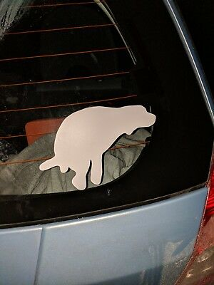 German shorthaired pointer POOP DECAL .YES TAKING A poop