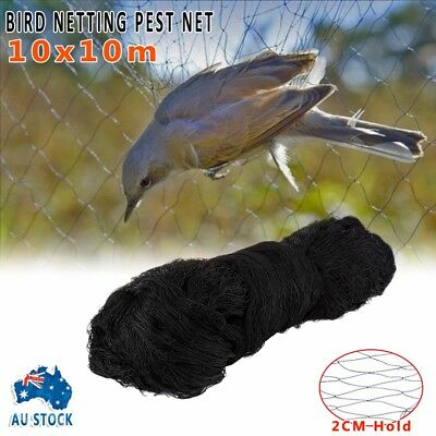 Heavy  Commercial Fruit Tree Plant Knitted Anti Bird Netting Pest Net 10MX10M