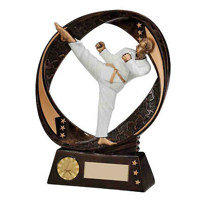 Resin Typhoon Karate Trophies Martial Arts Awards 2 sizes FREE Engraving