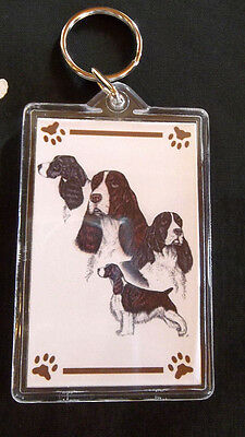 Springer Spaniel Key Chain