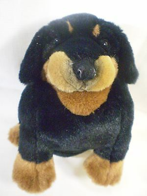Amazing Rottweiler Chubby Adorable Dog - Dakin-Rottweiler-Dog-Black-Tan-Rottie-Chubby-Puppy  Trends_61850  .jpg