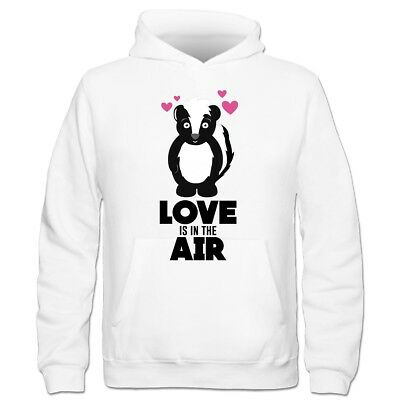 Love Is In The Air Skunk With Hearts Kinder Kapuzenpulli