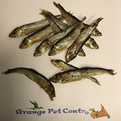 Dried Whole Sprats 100% Natural Tasty Dog Puppy Fish Treats BARF. Dogs Love 'Em