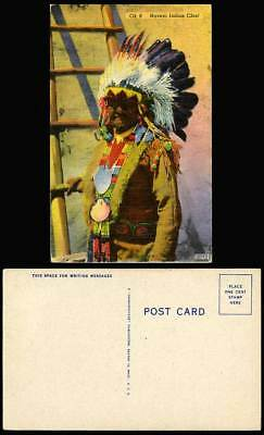American Red Indian NAVAJO INDIAN CHIEF Native Man Ethnic Costumes Old Postcard