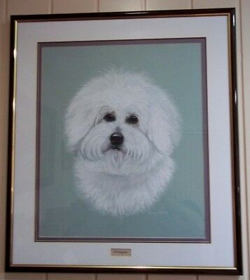 Pastel Dog Portrait , by Penny Ursell , ' D'Artagnan ' .