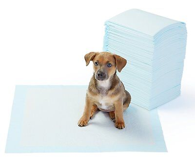 100 22x22 DOG PUPPY PET HOUSEBREAKING WEE WEE PEE TRAINING POTTY PADS UNDERPADS