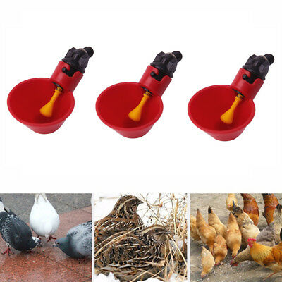 2PCS FEED AUTOMATIC Poultry Water Drinking Cups Bird Coop