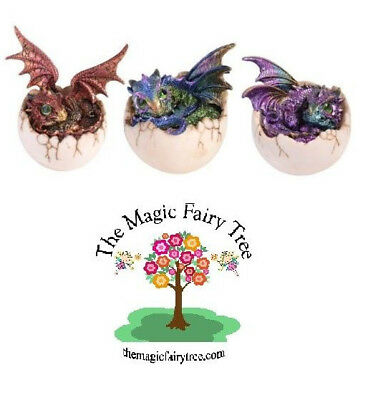 Dragon Baby Hatching From Egg - Set of 3 figurine ornaments - red, green, purple