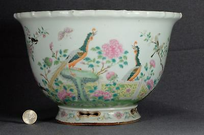 Chinese flower pot Qing dyn. 同治 Tongzhi Imperial quality antique porcelain