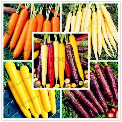 100pcs/bag Carrot fruit vegetable seeds Nutrition organic healthy food for home