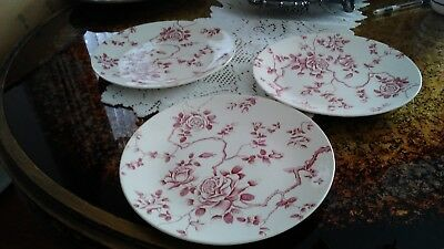 """Ridgway England Shadow Rose 10"""" Dinner Plate Pink Mauve Roses On Branches"""