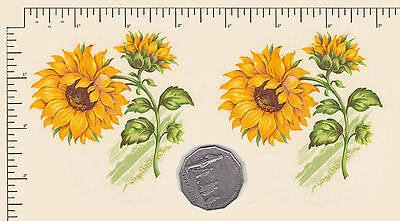2 x Yellow Sunflower floral Waterslide ceramic decals  Decoupage  PD867