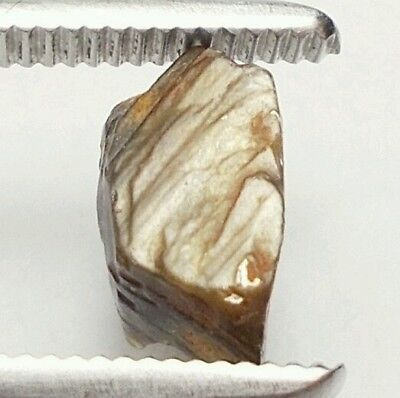Natural Rough Star Sapphire Unheated 100% Natural 6,10 Cts.