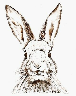 Framed Canvas  Art  Print Rabbit Drawing Ready To Hang