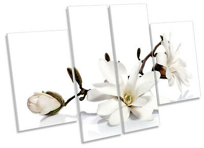 White Magnolia Flowers Floral Picture CANVAS WALL ART Four Panel