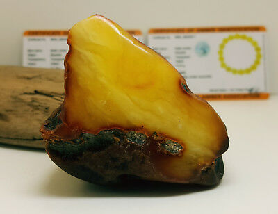 Stone Natural Baltic Amber Raw 120,5g White Butterscotch Huge Vintage Old M-102