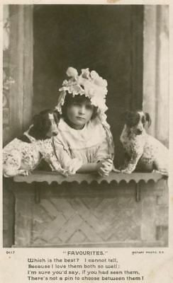 RARE Old Postcard PC German Shorthaired Pointer Puppies Dogs England c1908