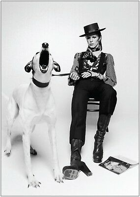David Bowie Vintage Black and White Poster Art Large Print A0 A1 A2 A3 A4 Maxi