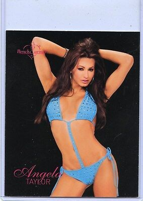2004 Benchwarmer Series 2 Angela Taylor Jumbo Box Topper Card 8 Of 8