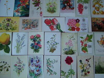 100 ART TYPE Postcards of FLOWERS & PLANTS.  1960's onwards. Used & Unused.