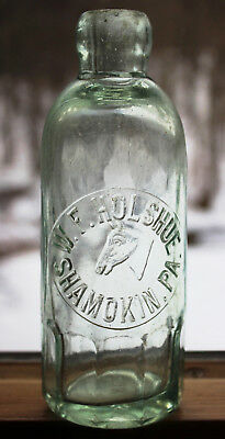 Antique W. F. HOLSHUE SHAMOKIN PA. Embossed Horse Head Hutchinson Soda Bottle