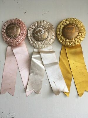 North Shore 1951 Horse Show ribbons lot 3 North Shore Long Island Smithtown NY
