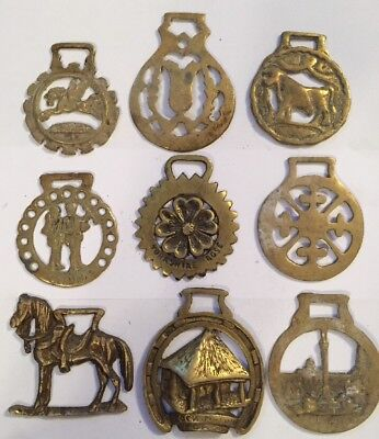 9 Antique Brass English Horse Brasses Saddle British Brass Decoration Lot 2