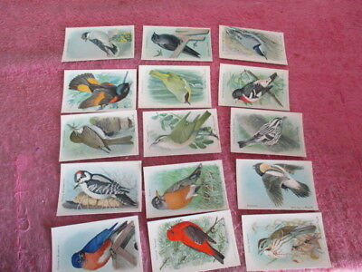 15 ANTIQUE ARM & HAMMER TRADE CARDS USEFUL BIRDS OF AMERICA Advertising