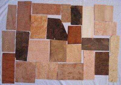 25 Blatt Furnier Wurzel und Maser Holz  Collection placage de loupes 25 feuilles