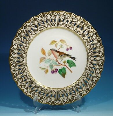 Beautiful Mid 19th Century Handpainted Minton China Plate - Chaffinch.