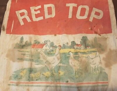 Vintage RED TOP EGG MASH Cloth Feed Sack Golden Sun Estherville Iowa Bag