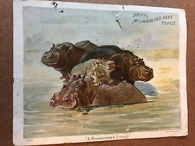 3 McLaughlin's Coffee Cards  Tigers, Elephant, Rhino  part of 16 card set