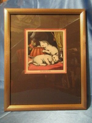 "9255 ~ Vintage Lithograph ~ ""THE GREEDY KITTEN"" Excellent White Kittens"