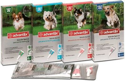 ADVANTIX Pipetas Para Perros 10 A 25kg (24 Pipetas)