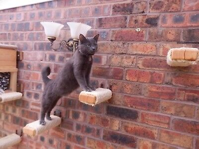Wall Mounted 10mm Sisal Scratching Steps for Cats