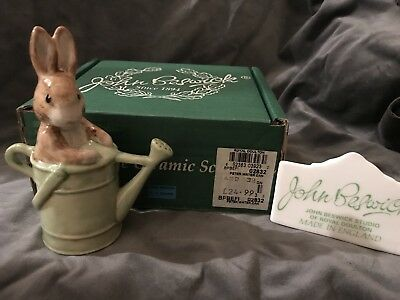 BESWICK BEATRIX POTTER Peter Rabbit in the Watering Can 1999-2000 3940 BP10A MIB