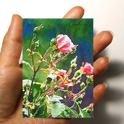 "ORIGINAL ART PICTURE WATERCOLOR HAND PAINTED ACEO FLOWERS ""Roses"" artist signed"
