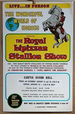 ROYAL LIPIZZAN STALLION Window Card poster 22 X 14 famous white horses Vienna