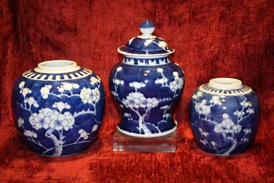 3 Quality Antique Chinese B&W Prunus Pattern Ginger Jars Late 19th Century Qing