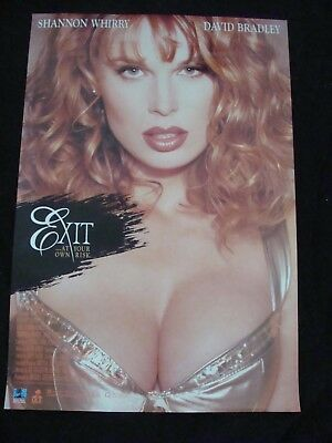 EXIT AT YOUR OWN RISK movie poster SHANNON WHIRRY original 1996 video promo