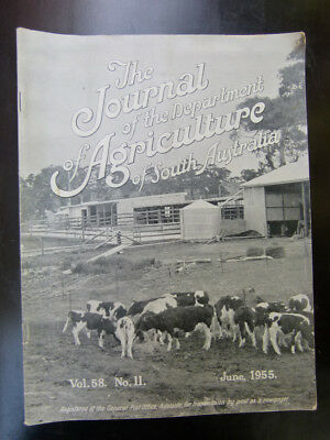 Old South Australian Agriculture Farming Journal June 1955